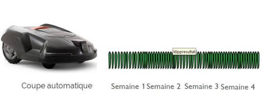 differences-coupes-tondeuses-automatiques02